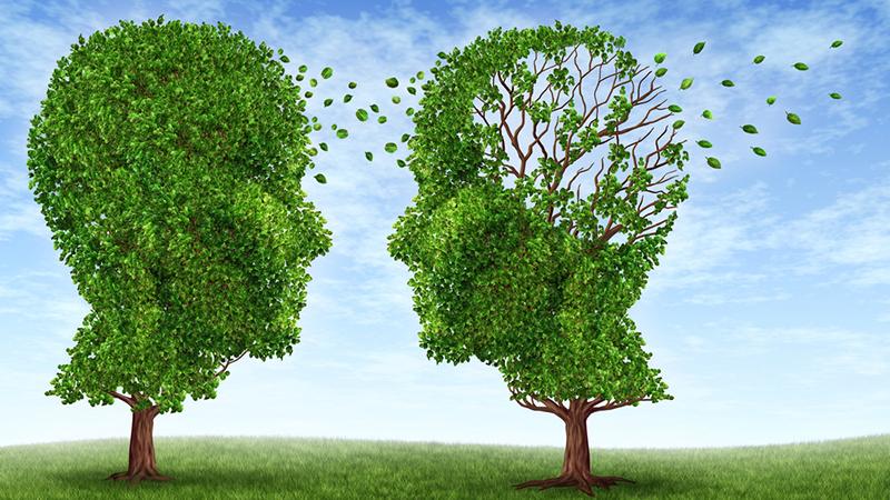 Стоит ли делиться своими планами с другими: мнение психологов